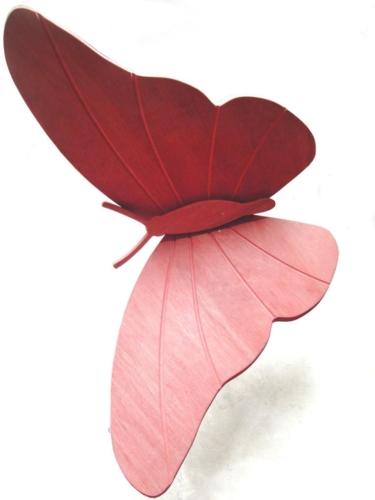 14 formula5-farfalla (1) (1)