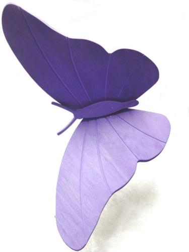 16 formula5-farfalla